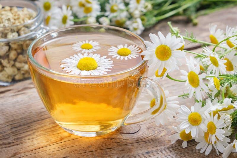 Margaritas en taza de té de cristal transparente, hierbas sanas de la manzanilla y el tarro de cristal de brotes secos de las mar fotografía de archivo