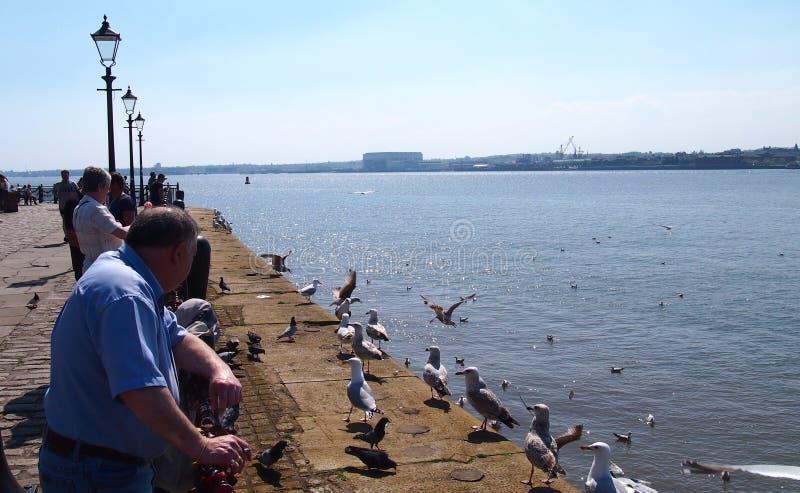 A margem de Liverpool, Inglaterra fotos de stock