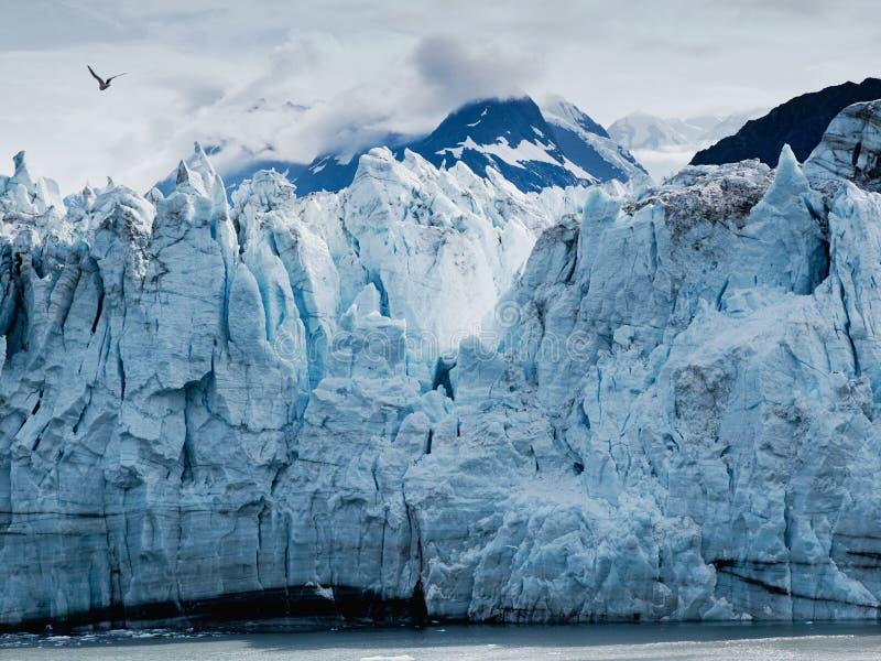 Margerie Glacier al parco nazionale della baia di ghiacciaio nell'Alaska sudorientale fotografia stock