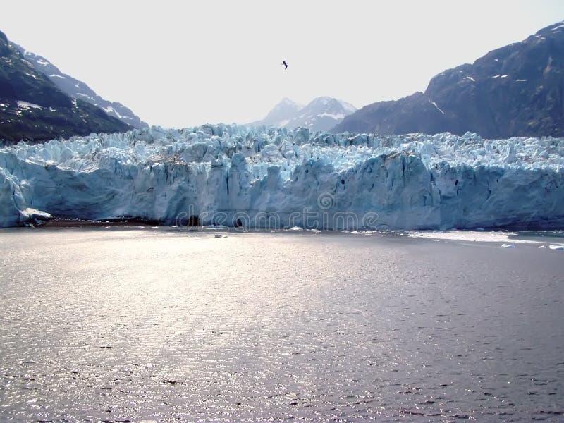 Download Margerie Glacier - Galcier Bay Stock Photo - Image of glacier, national: 102138