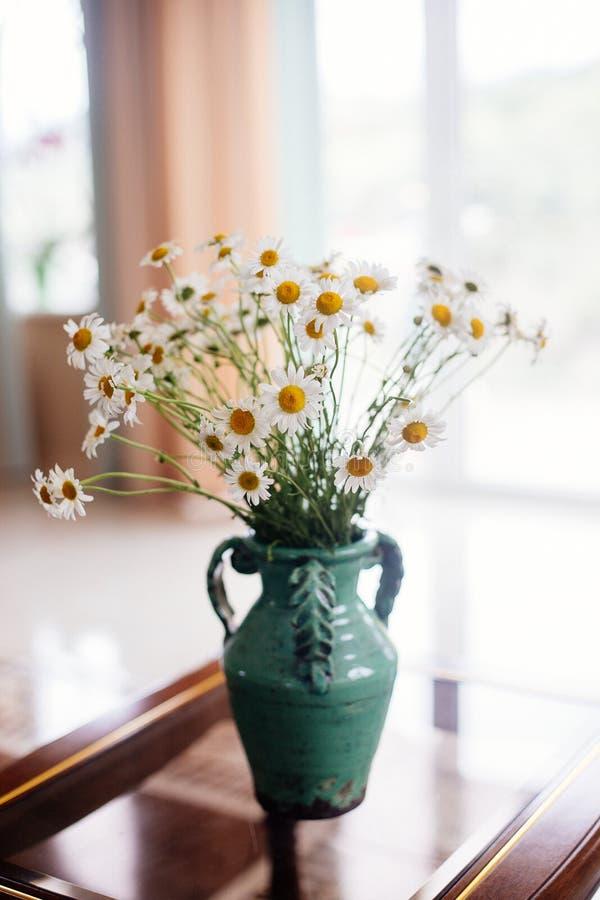 Margherite bianche in un vaso immagine stock