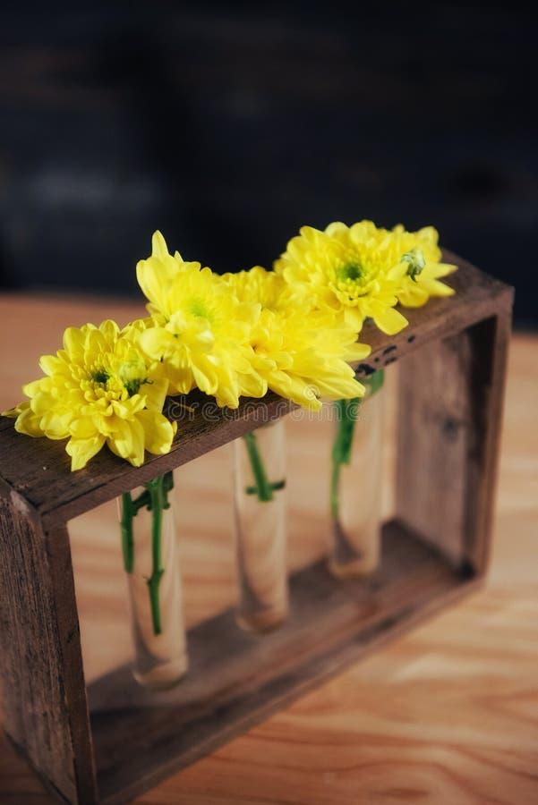 Margherite gialle luminose in un vaso di vetro sulla spada di legno fotografie stock