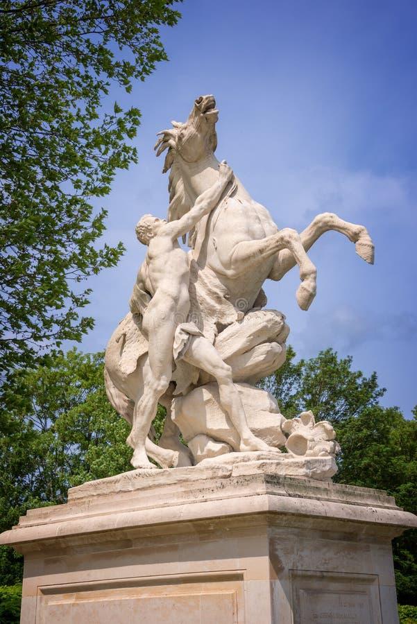 Margliści konie, rzeźby od 1745, Francja obraz stock
