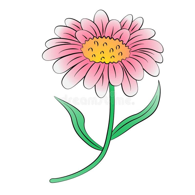Marguerite illustration libre de droits