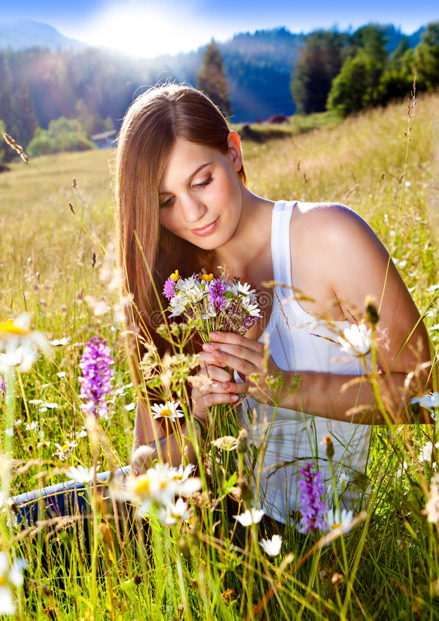 Marguerite-cordon 8 photo stock
