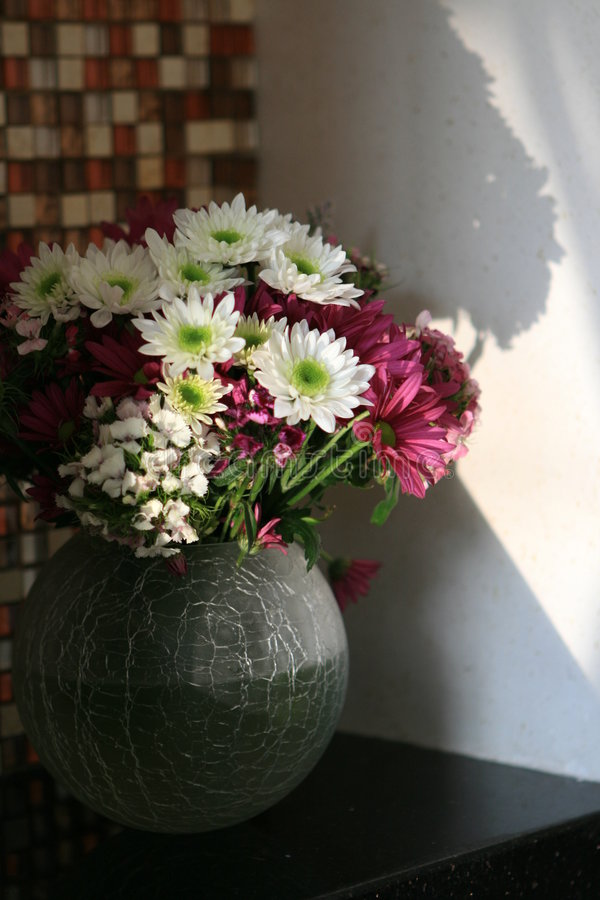 Marguerite dans un vase images stock