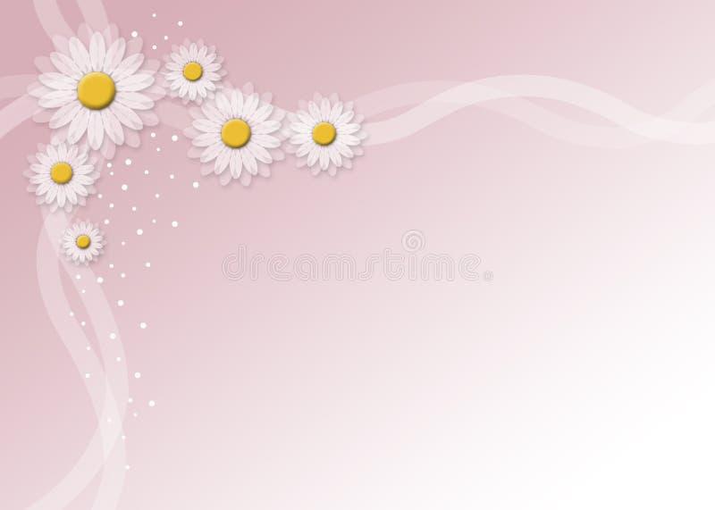marguerites illustration stock