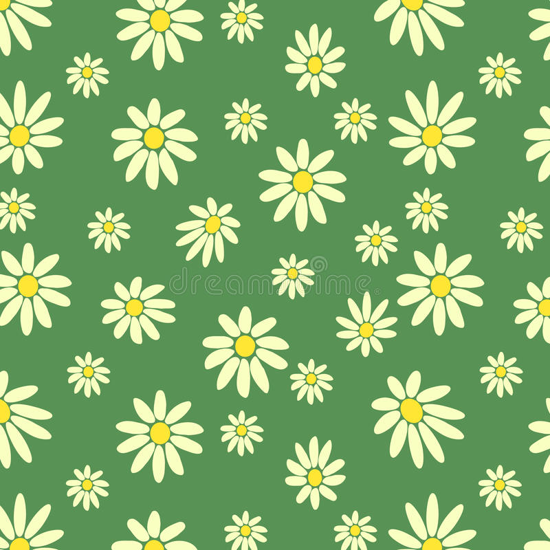 Marguerites blanches images stock