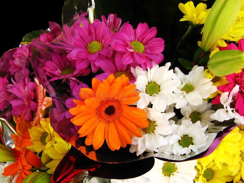Marguerites et bouquet de Gerberas photo stock
