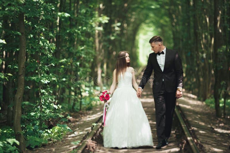 Marié avec du charme de couples heureux de mariage et jeune mariée parfaite posant en parc photo libre de droits