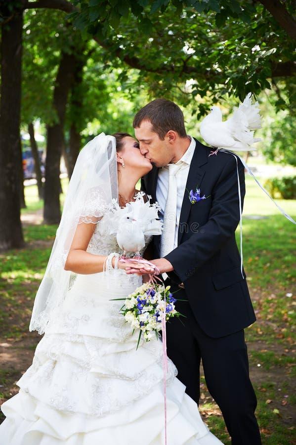 Marié d'ADN de mariée de baiser avec les pigeons blancs image stock