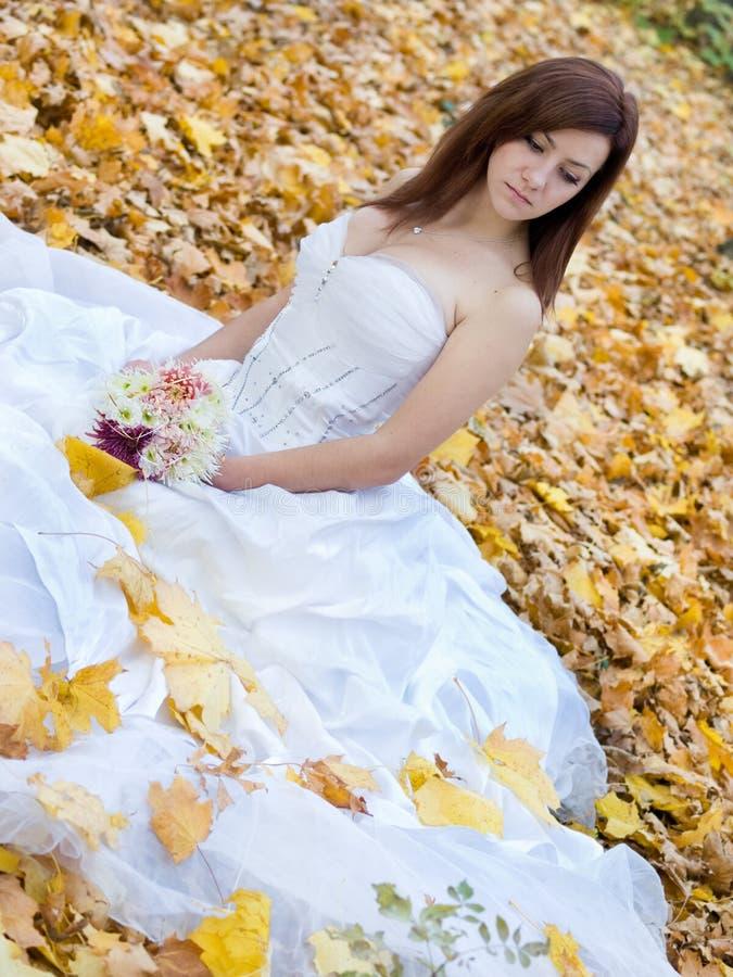 Mariée d'automne images libres de droits