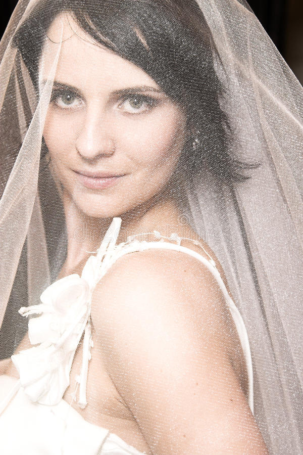 Mariée de Brunette images libres de droits