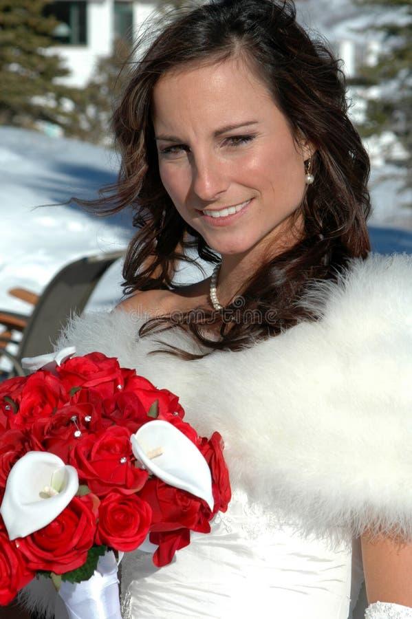 Mariée de l'hiver image libre de droits
