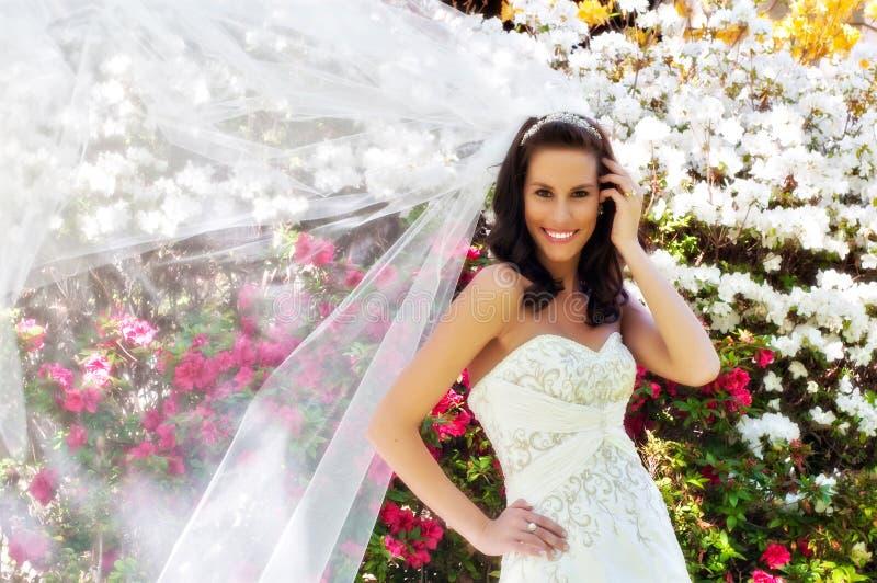 Mariée devant des fleurs avec le voile photos libres de droits