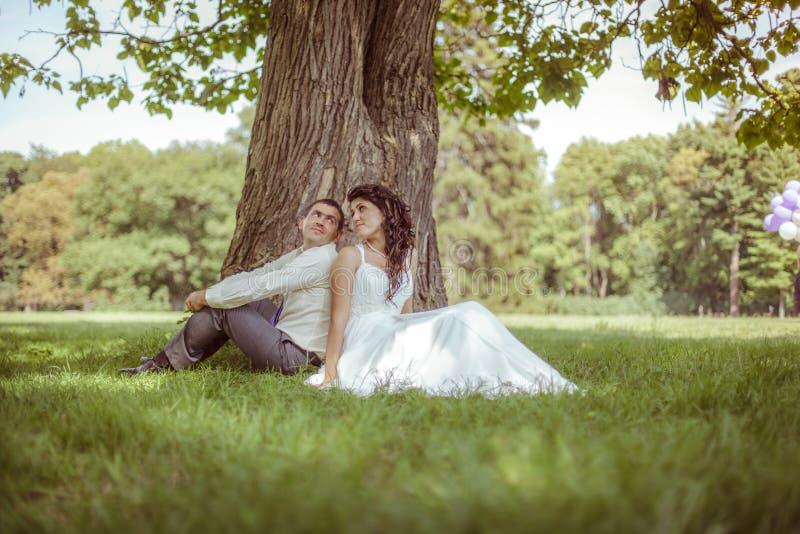 Mariée et marié image stock