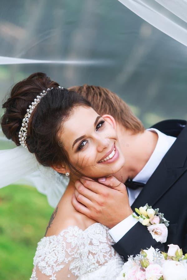 Mariée et marié dans des baisers de stationnement Couples de mariage dans l'amour image libre de droits