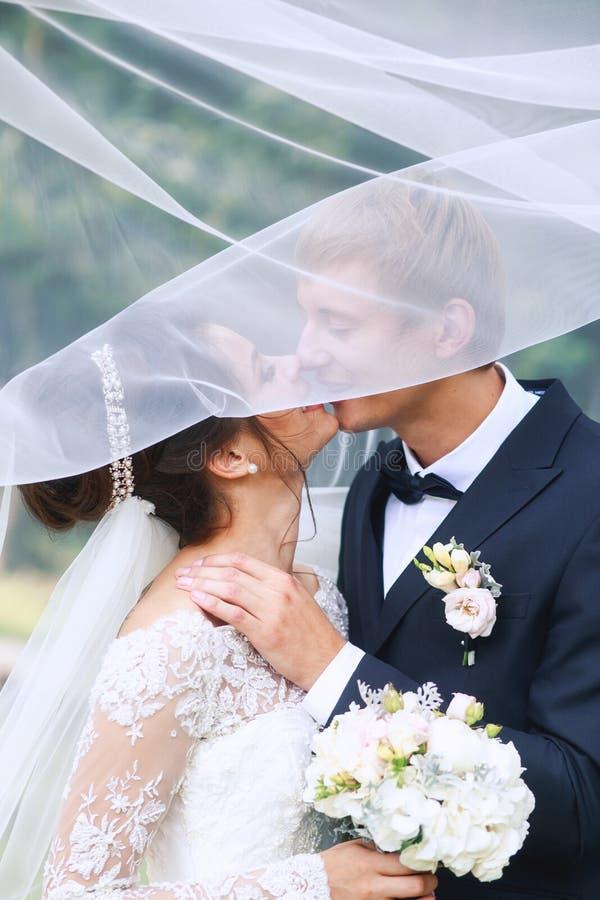 Mariée et marié dans des baisers de stationnement Couples de mariage dans l'amour photographie stock