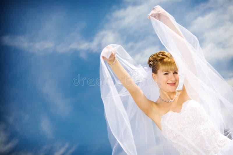 Mariée et voile images stock