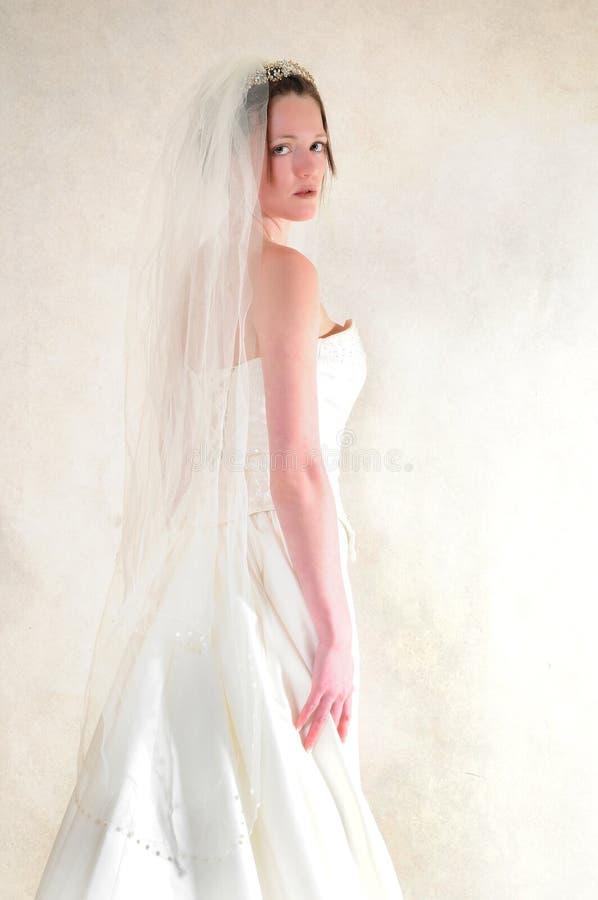 Mariée renversante photos libres de droits