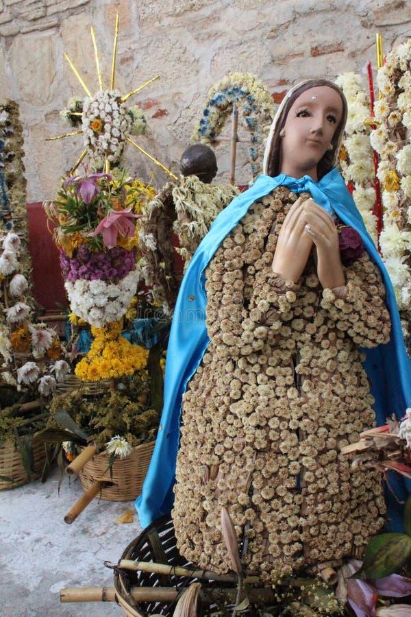 Maria del flores stock foto's