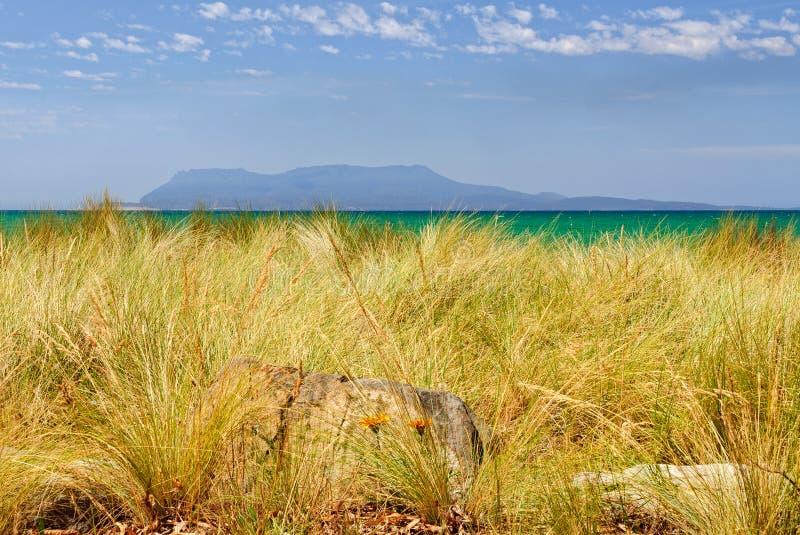 Maria Island - Tasmanien stockfotos
