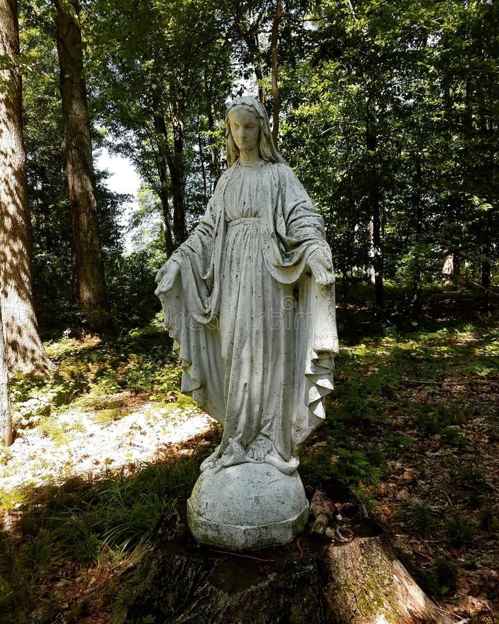 Maria nel legno fotografia stock