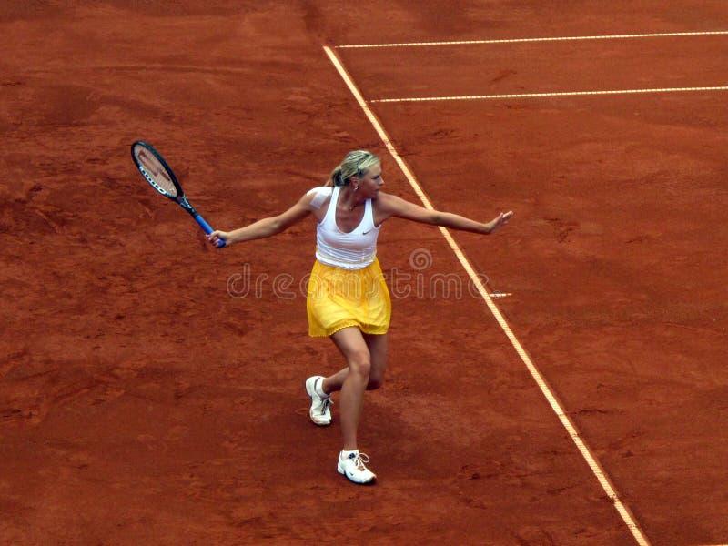 Maria Sharapova lizenzfreies stockfoto