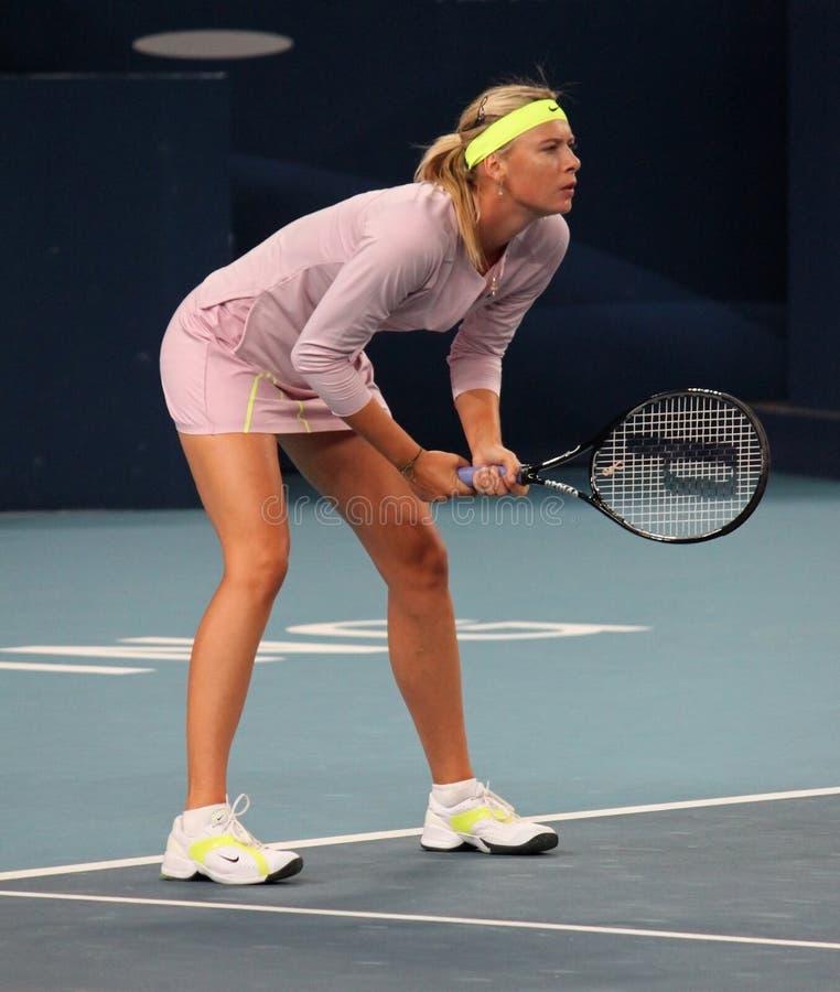 Maria Sharapova (RUS), Tennisspieler lizenzfreie stockfotografie
