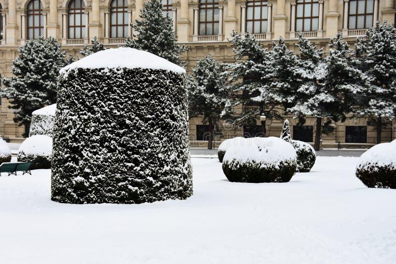 Maria-Theresien-Platz en stor offentlig fyrkant i Wien royaltyfria foton