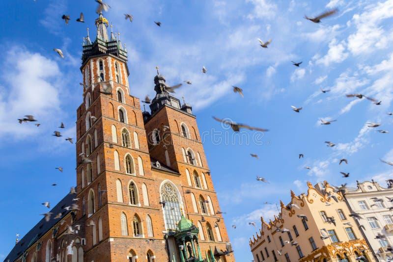 Mariacki kyrka, Krakow, Polen, Europa royaltyfri foto