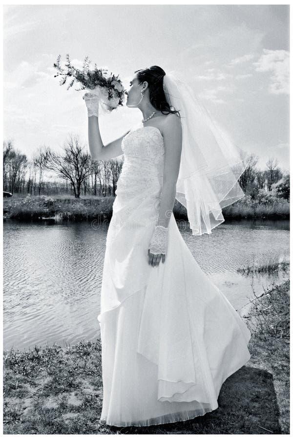 Mariage de fiancé photos stock