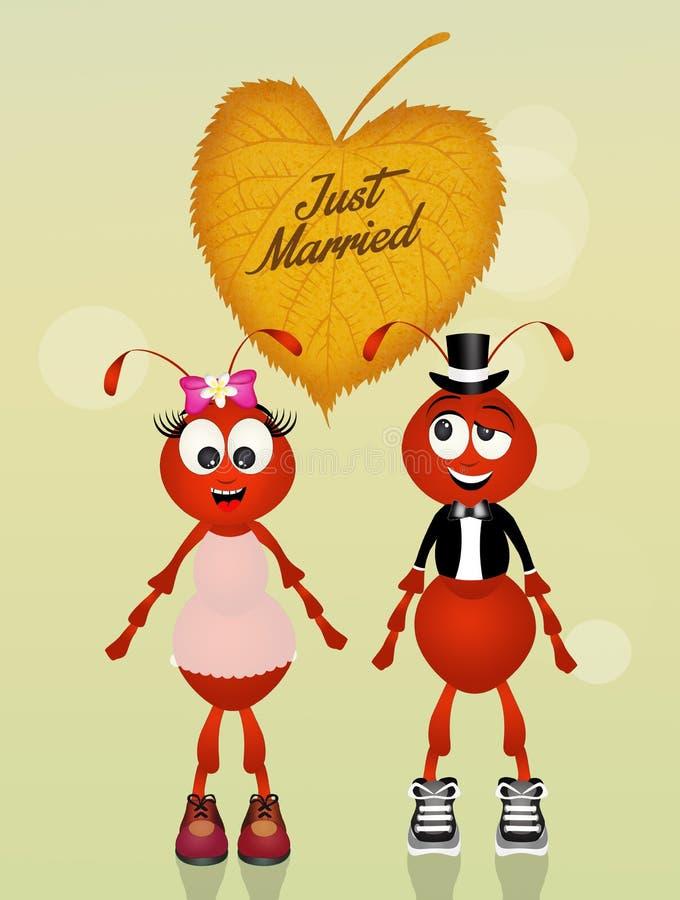 Mariage des fourmis illustration stock