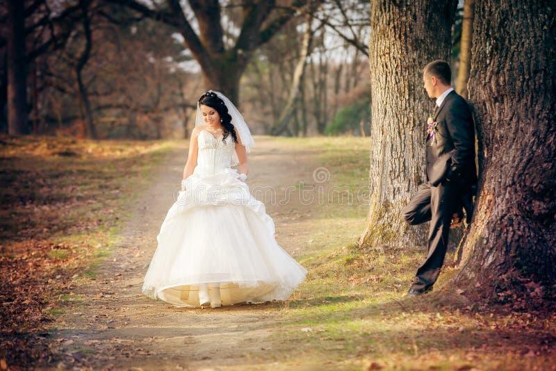 Mariage tiré des jeunes mariés en stationnement image libre de droits