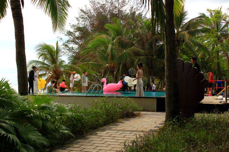 Mariage professionnel nombreux et photoshoots romantiques sur une île tropicale images stock