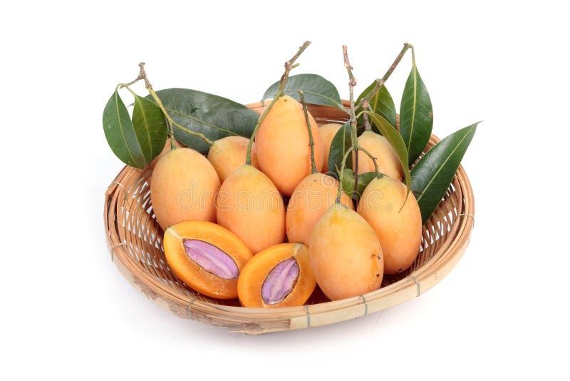 Marian Plum e Plum Mango fotografie stock libere da diritti