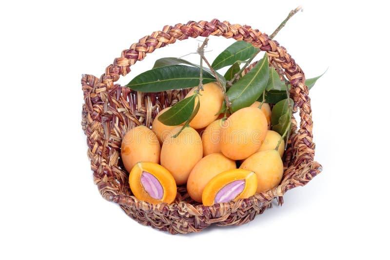 Marian Plum e Plum Mango immagine stock