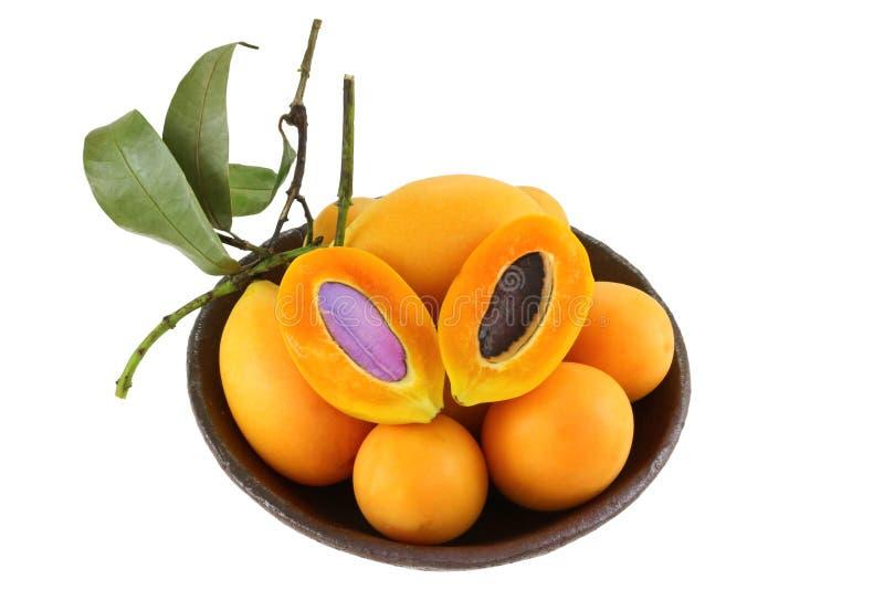 Marian Plum (Maprang, Plum Mango, Gandaria) immagine stock