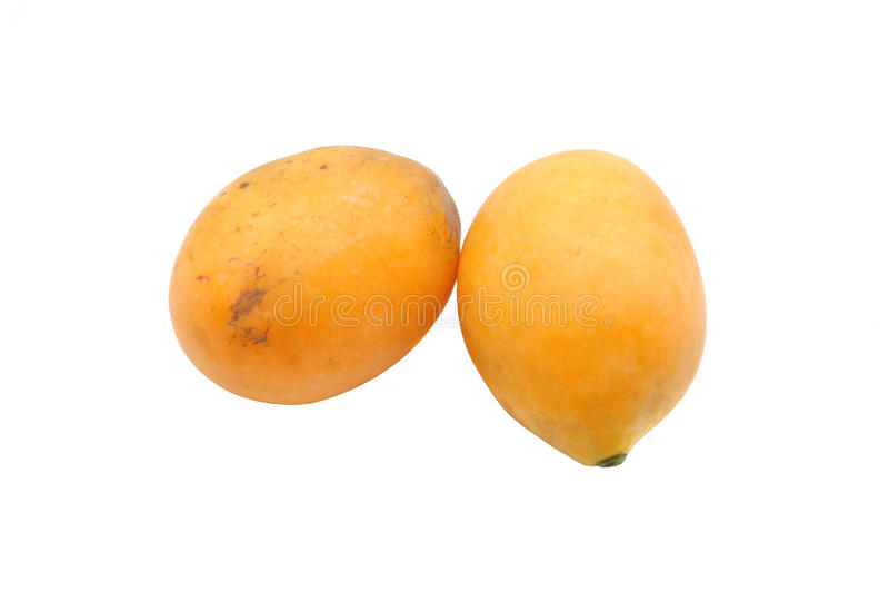Download Marian Plum stock image. Image of health, mango, lush - 39510113
