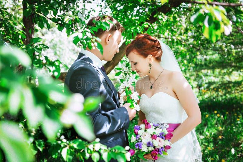 Marido e esposa novos felizes, nas flores, olham o ramalhete imagens de stock