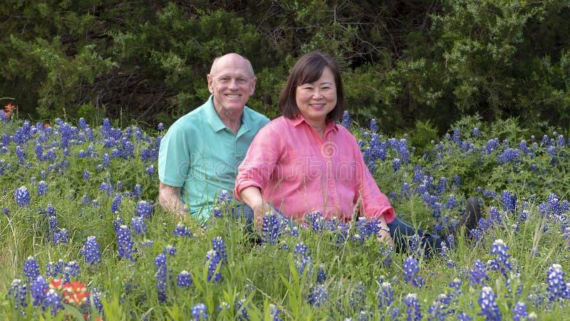Marido e esposa que apreciam os bluebonnets em Ennis, Texas fotografia de stock royalty free