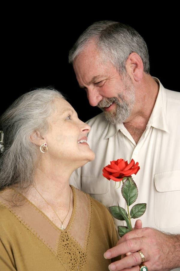 Marido romântico imagem de stock
