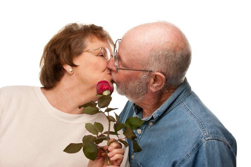 Marido superior loving que dá Rosa vermelha à esposa fotografia de stock