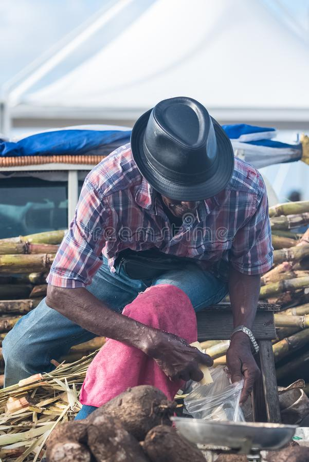 Marie-Galante island in Guadeloupe. January 13th, 2018, man who peels some sugar cane on the market royalty free stock image