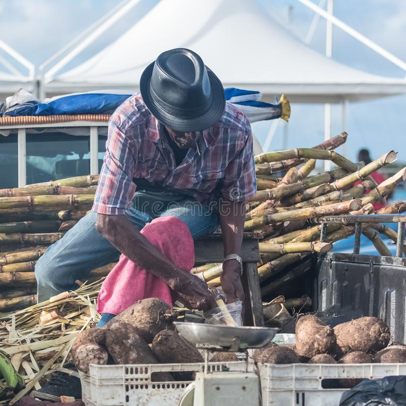 Marie-Galante island in Guadeloupe. January 13th, 2018, man who peels some sugar cane on the market royalty free stock images