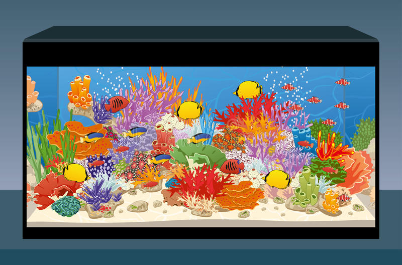 Marien ertsaderaquarium met vissen en koralen Het aquarium van het huis stock illustratie