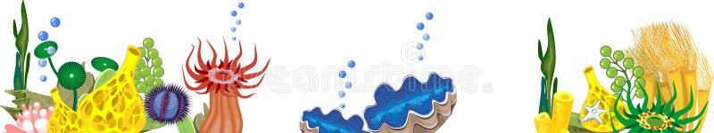 Mariene achtergrond met verschillend soort van koralen stock illustratie