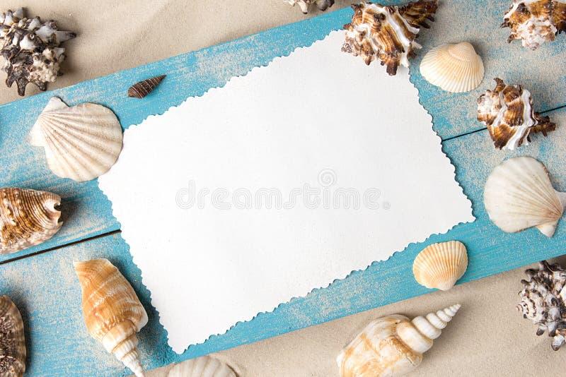 Mariene de zomerprentbriefkaar Zeeschelpen op blauwe houten raad in het zand op het strand stock foto