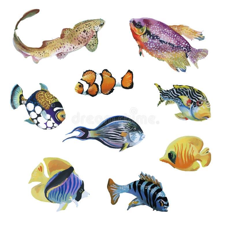 Mariene die het levenswaterverf met Tropische vissen wordt geplaatst royalty-vrije illustratie