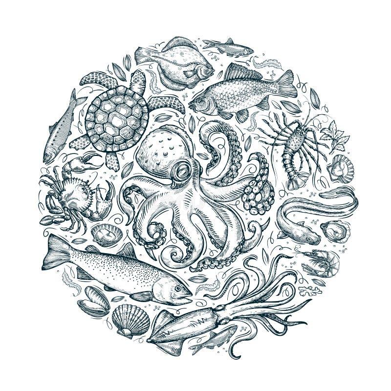 Mariene dieren, zeevruchten Hand getrokken schetsen Vector illustratie royalty-vrije illustratie